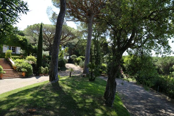 For sale house, villa Ramatuelle - Villa with vines near beaches in Ramatuelle